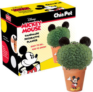 Mickey mouse chia pet