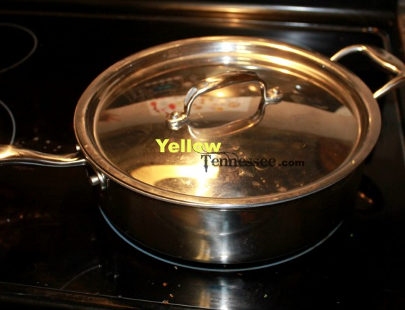stainless stell saute pan