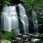 Visit Great Smoky Mountains National Park